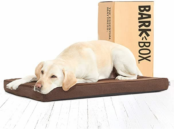 Barkbox orthopedic dog bed