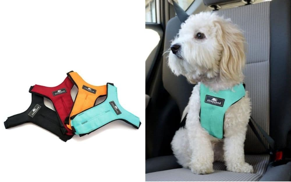 Sleepypod Clickit Sport dog harness