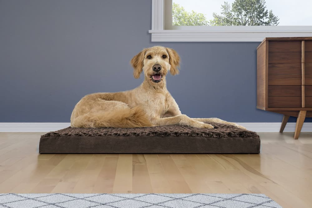 furhaven-orthopedic-dog-bed