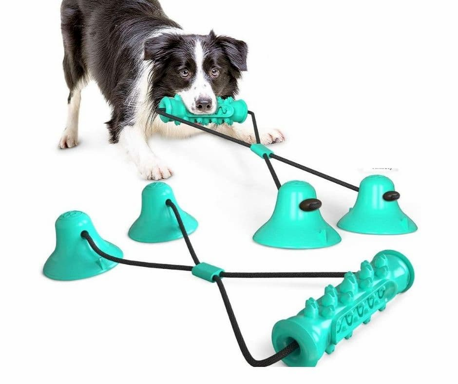 Vister Molar Stick Chew Toy