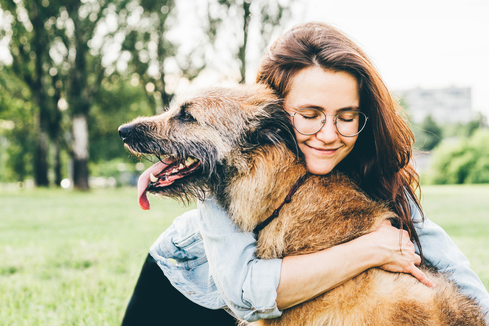 4 Ways to Give Your Older Dog Some Extra TLC